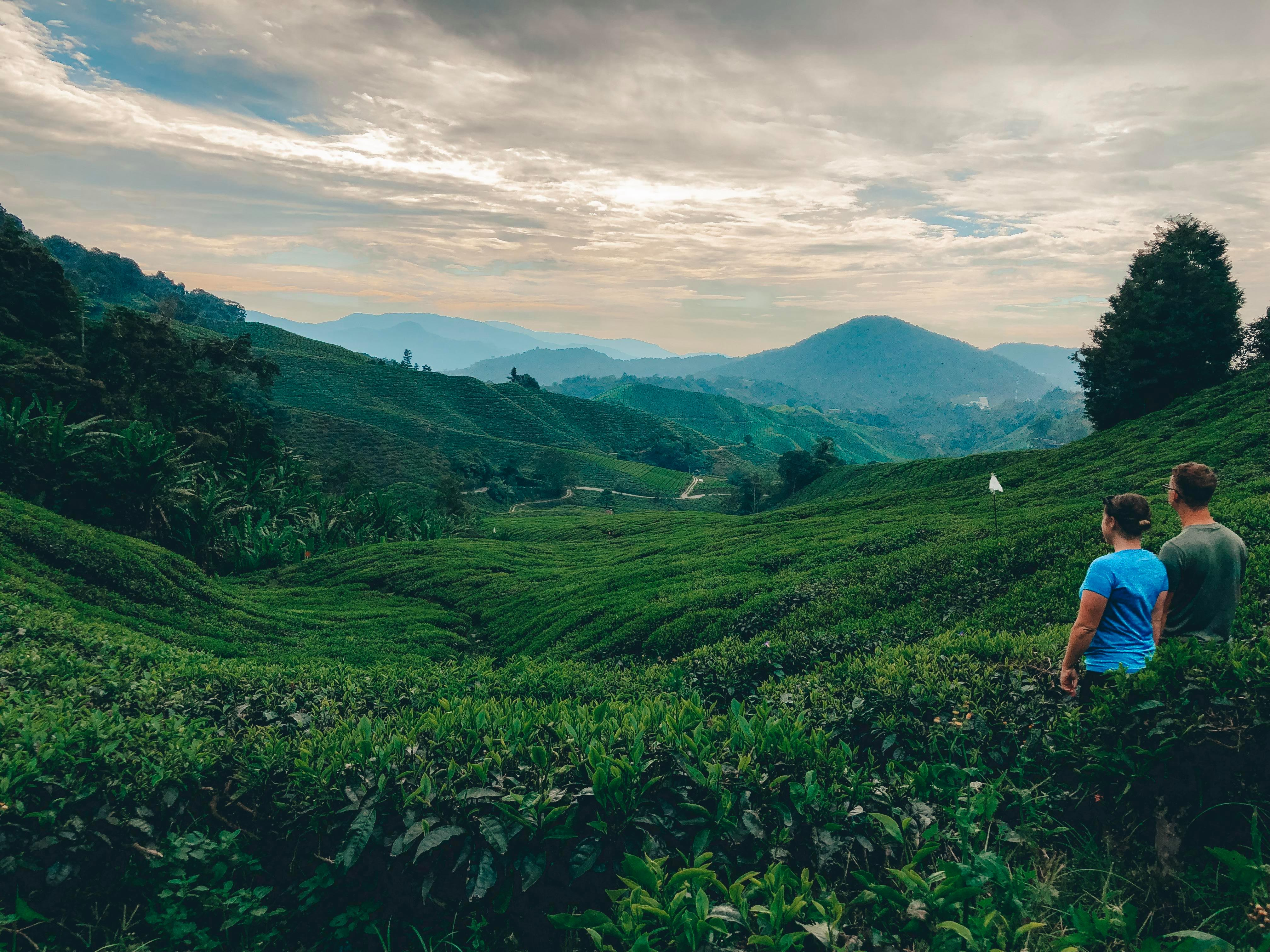 A couple in blue and green looking over a cloudy sky at the BOH tea plantation